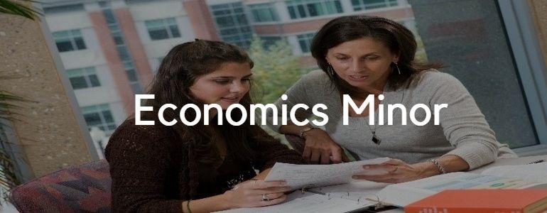 Economics Minor