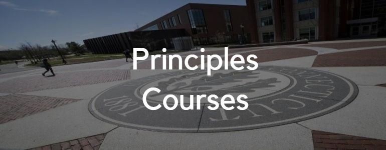 Principles Courses